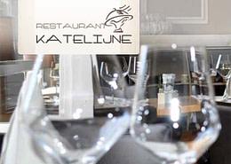 Webwinnaar portfolio websites - Webdesign Restaurant Katelijne