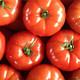 Webwinnaar portfolio websites - Webdesign Olbrechts Tomaten