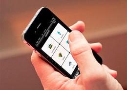 Webwinnaar portfolio websites - Webdesign Domospot Somers